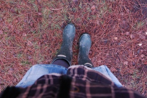 New Forest walk in wellies