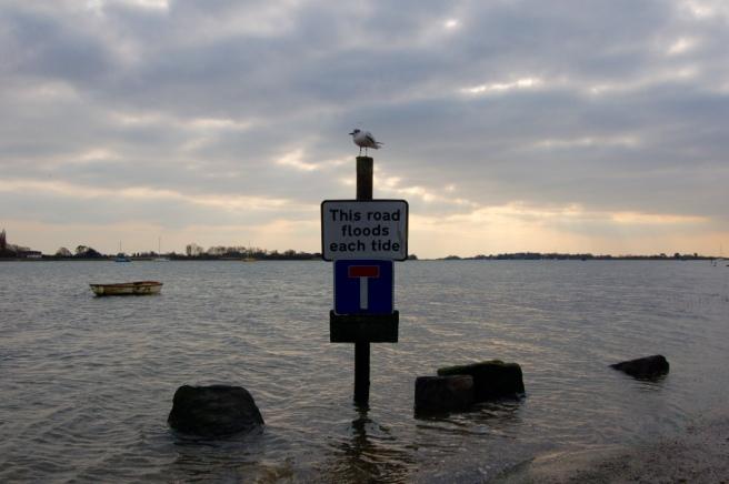 bosham_flood_tide