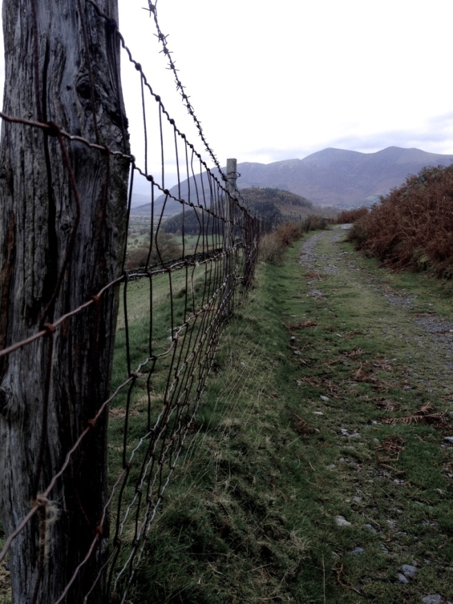lake_district_fence