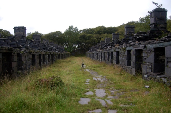 north_wales_quarry_houses