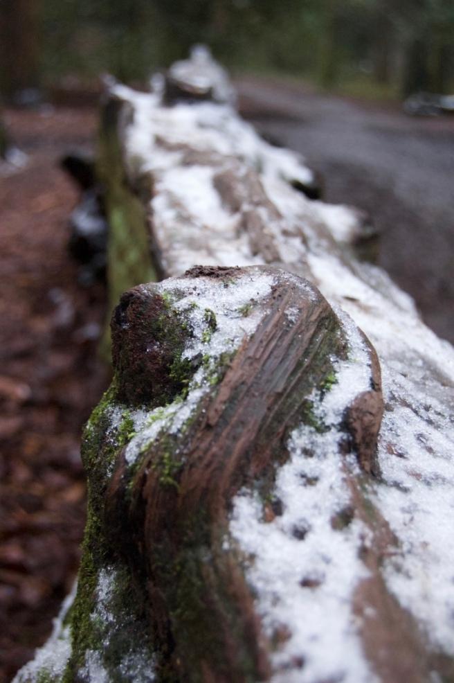 leith_hill_snow_log