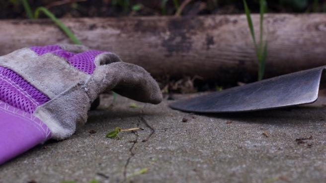 gloves_trowel