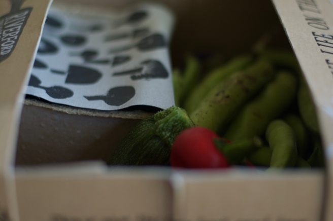 riverford_veg_box2