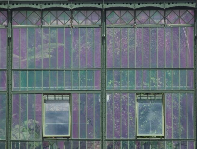 jardin_des_plantes_greenhouse