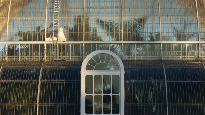 palm_house_kew_gardens