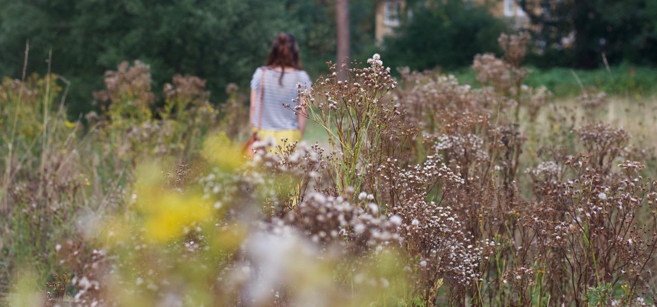 amberoot_yellow_skirt_field